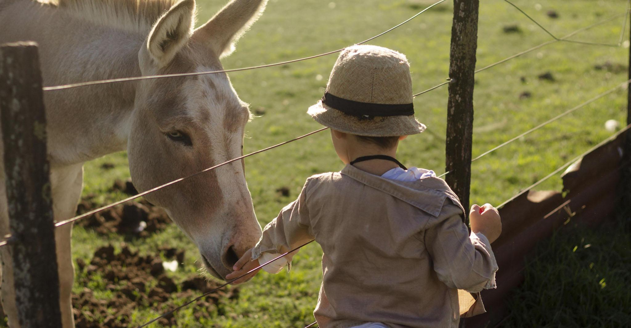 Avvicinare-i-bambini-alla-natura
