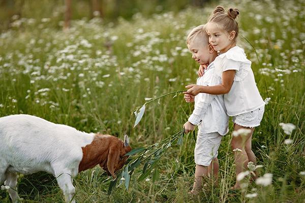 avvicinare-bambini-natura-fattoria